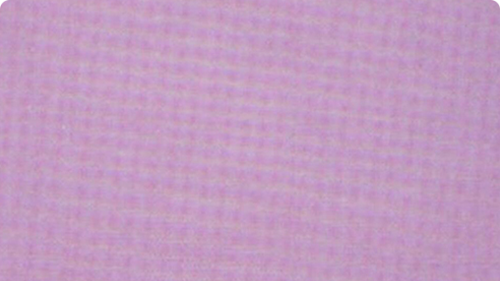 淋膜无纺布的材质